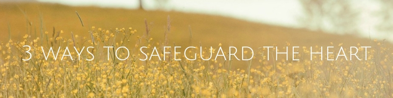 Safeguard the Heart