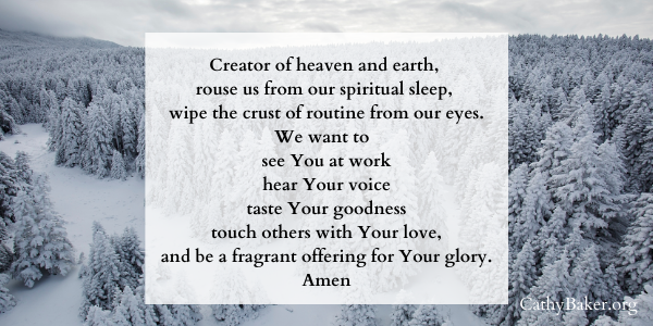 A prayer for our five senses to bring God glory